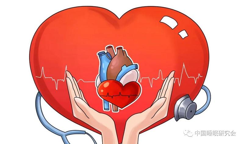【科研成果】睡眠时间长短与12种心血管疾病的因果关联